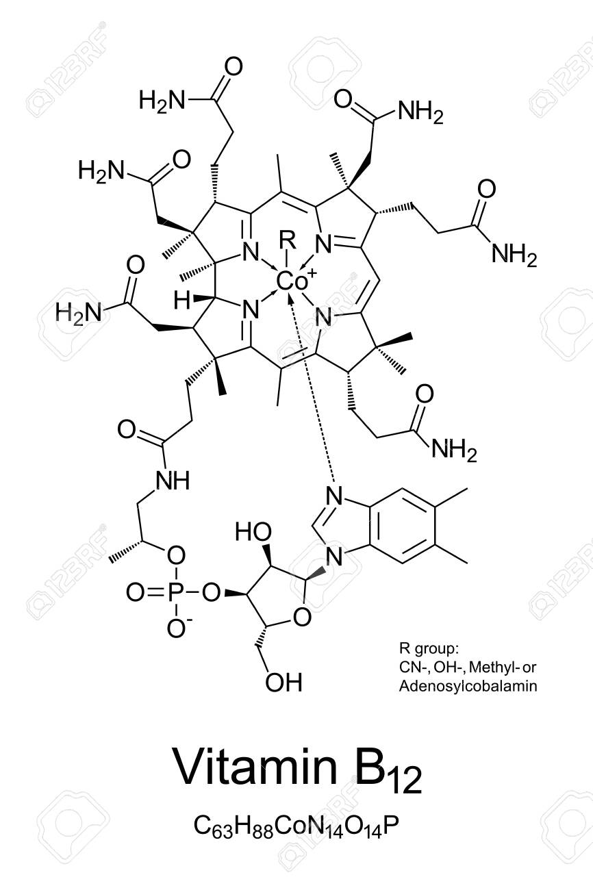 Vitamin B12, cobalamin, chemical structure. Involved in metabolism of every cell of the human body: DNA synthesis, functioning of nervous system and developing of red blood cells. Illustration. Vector - 140336151