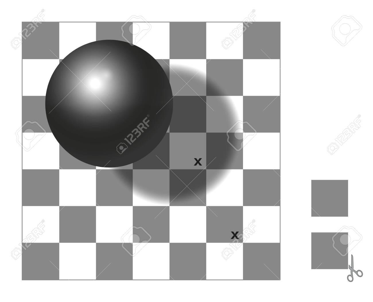 Optical illusion. Checker shadow illusion. The two squares with x mark are the same shade of gray. Cut out the two extra squares, compare, check and wonder. - 149677408
