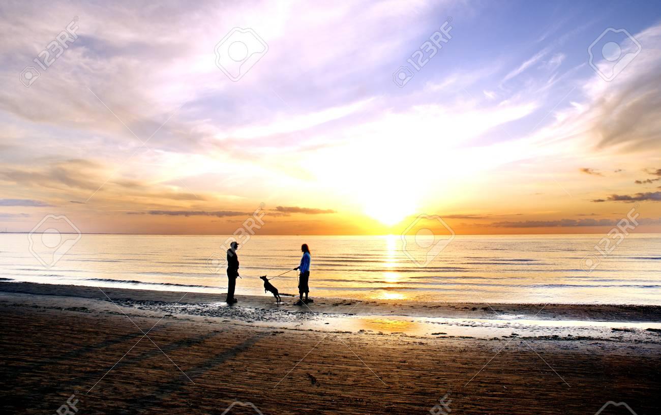 the beach - 55913725