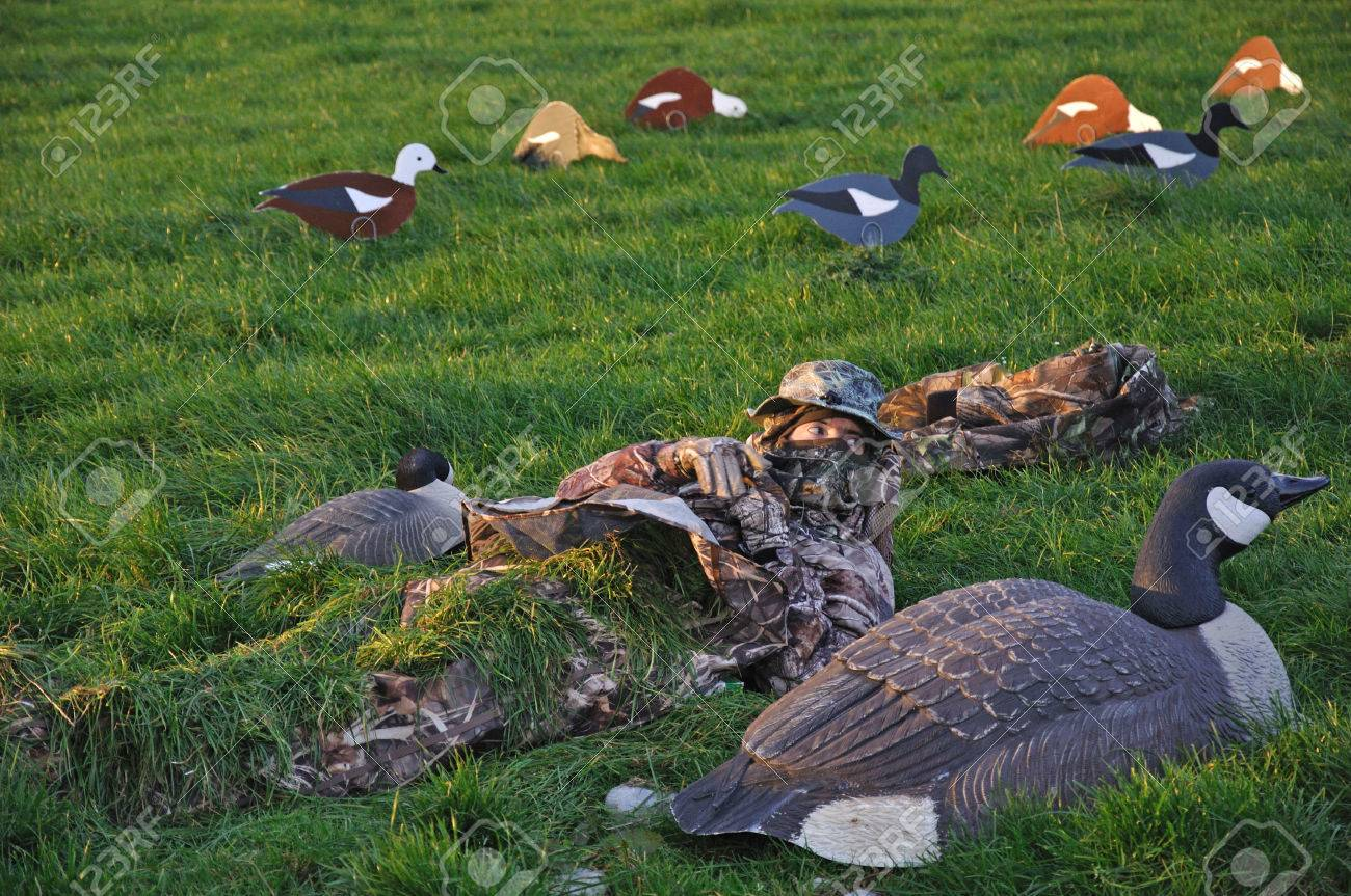 Hunter covers up among decoys of Canada Goose and Paradise ducks, West Coast, South