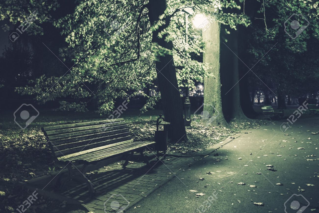 Park Bench Night In The Park Urban Scenery After Dark Stock Photo
