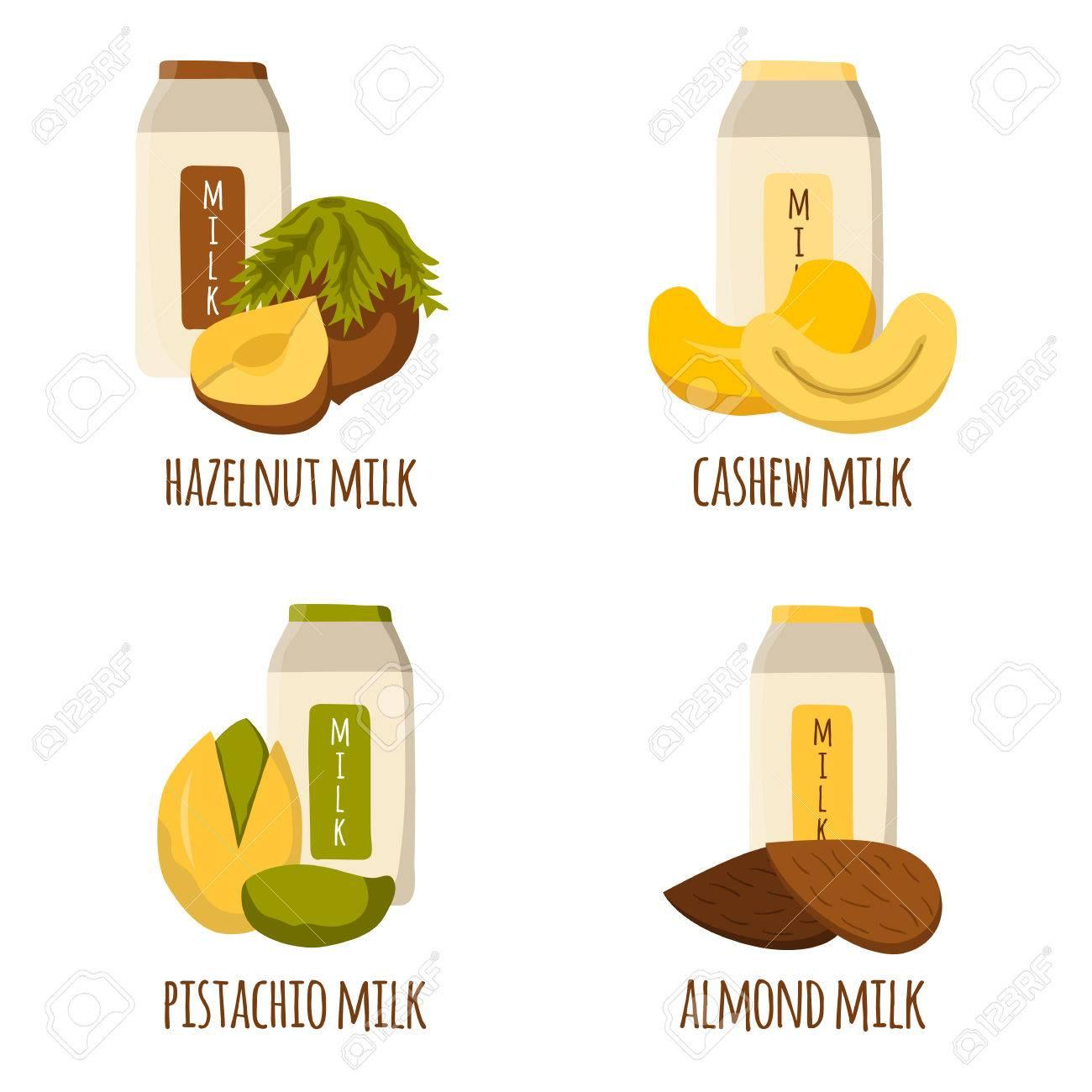 Vector cartoon illustration with nuts milk: almond milk, pistachio milk, cashew milk, hazelnut milk. Lactose free diary products. Vegan source of protein and calcium. Vegan menu. Alternative for milk - 56789866