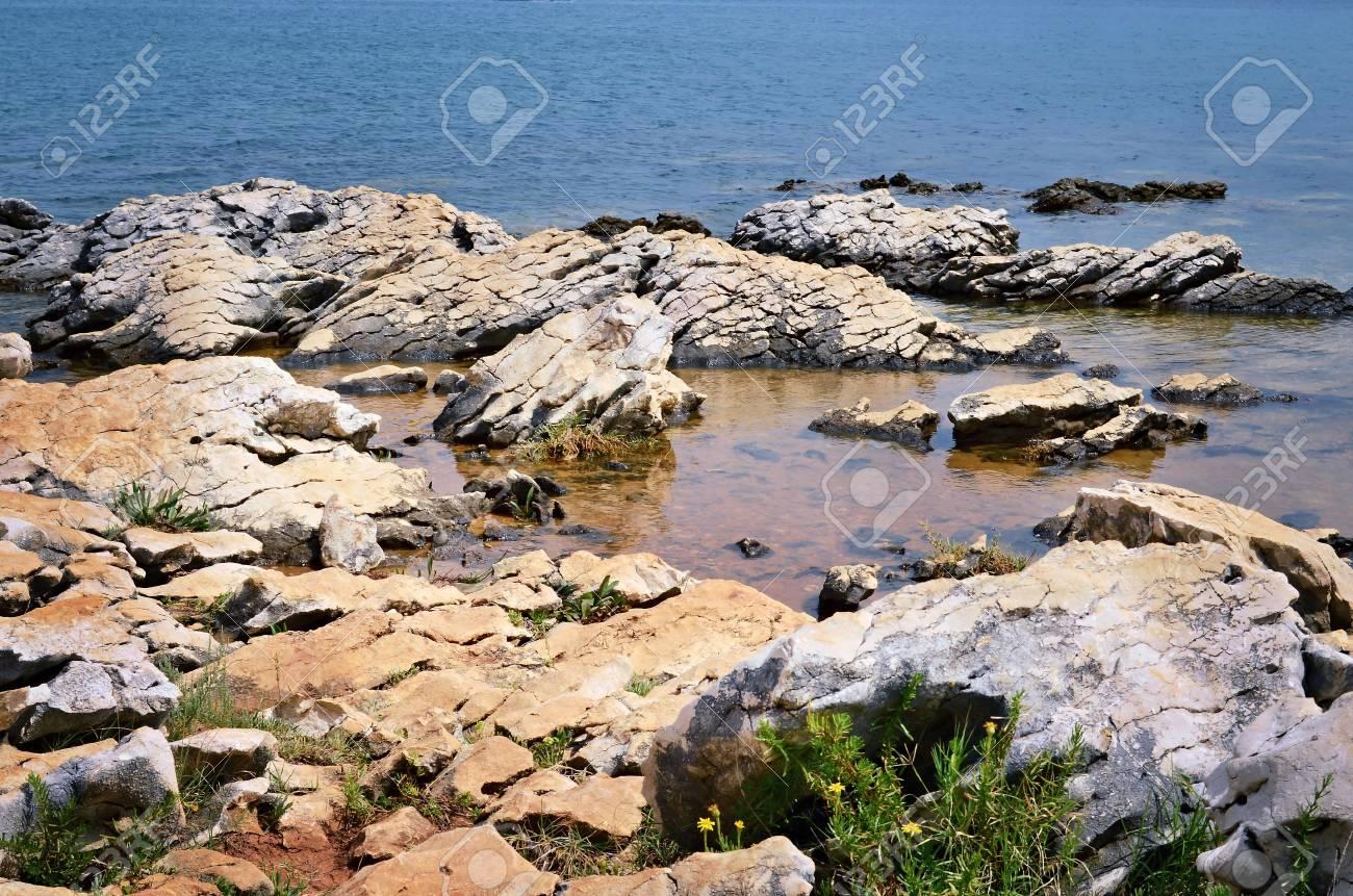 Coast with stones - 31093069