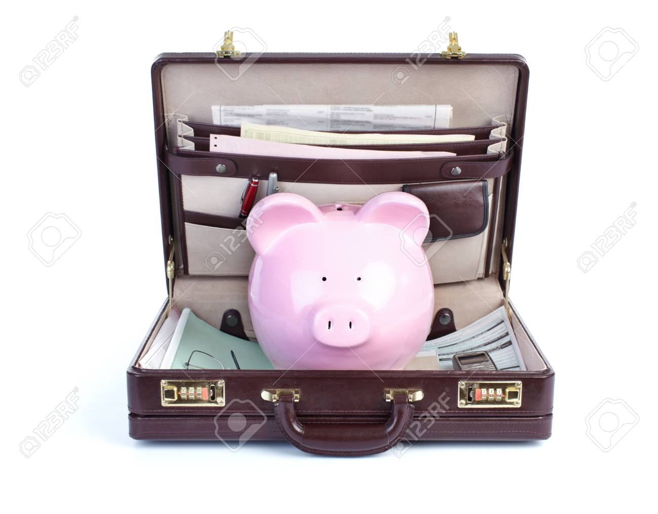 Pig and portofolio on a white background - 8466365