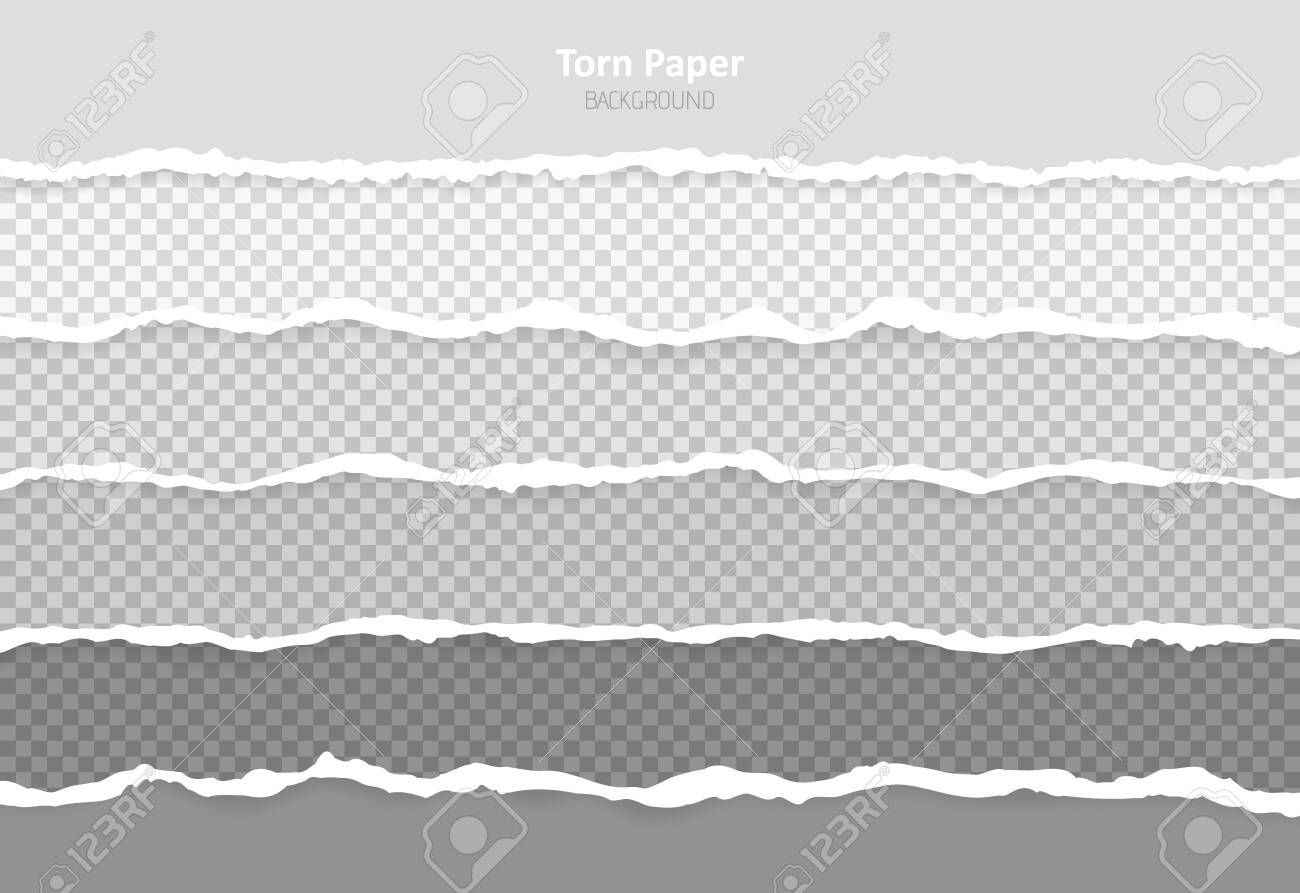 Set horizontal torn paper edges, seamless horizontally texture. Space for advertising, banner of web page, border and header. - 151571376