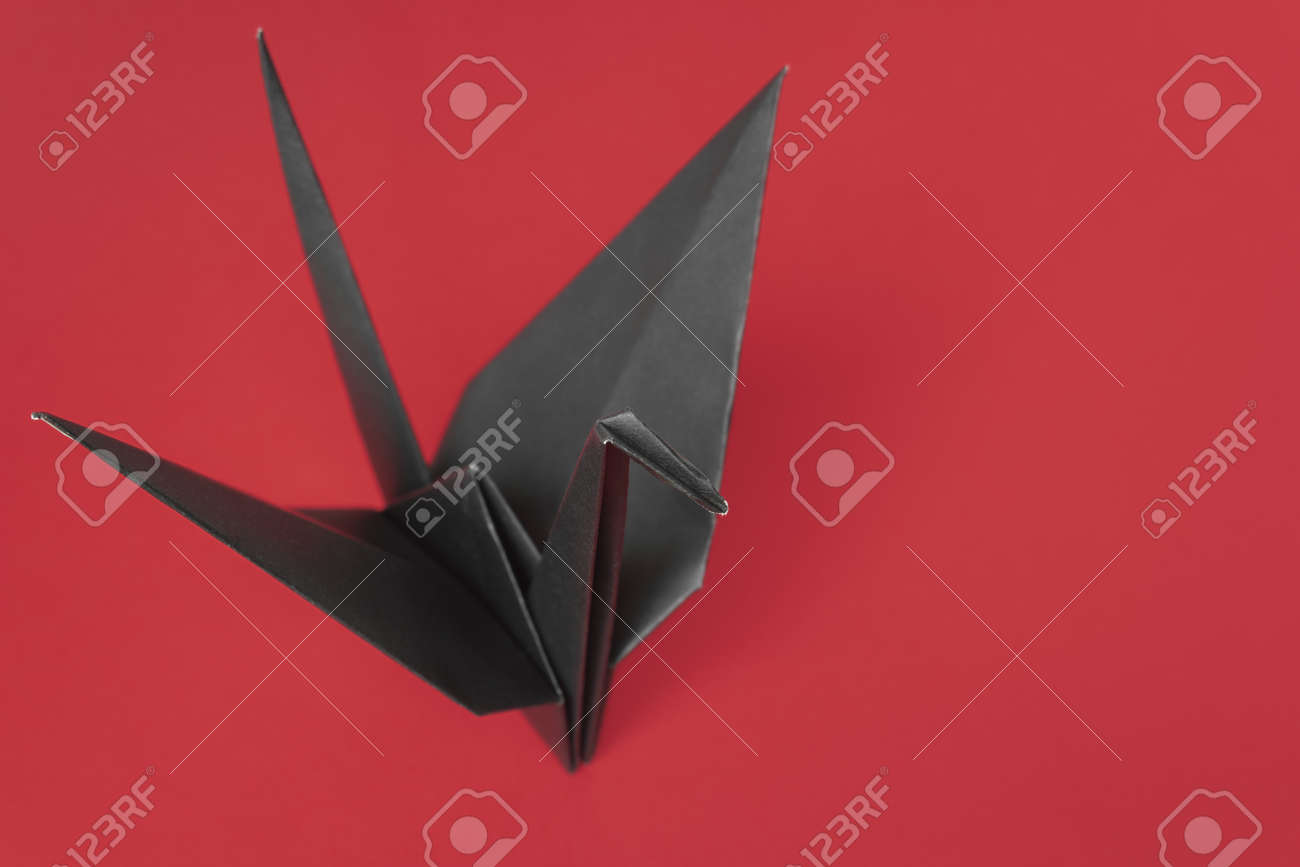 A black paper bird on a black background Stock Photo - 9240632