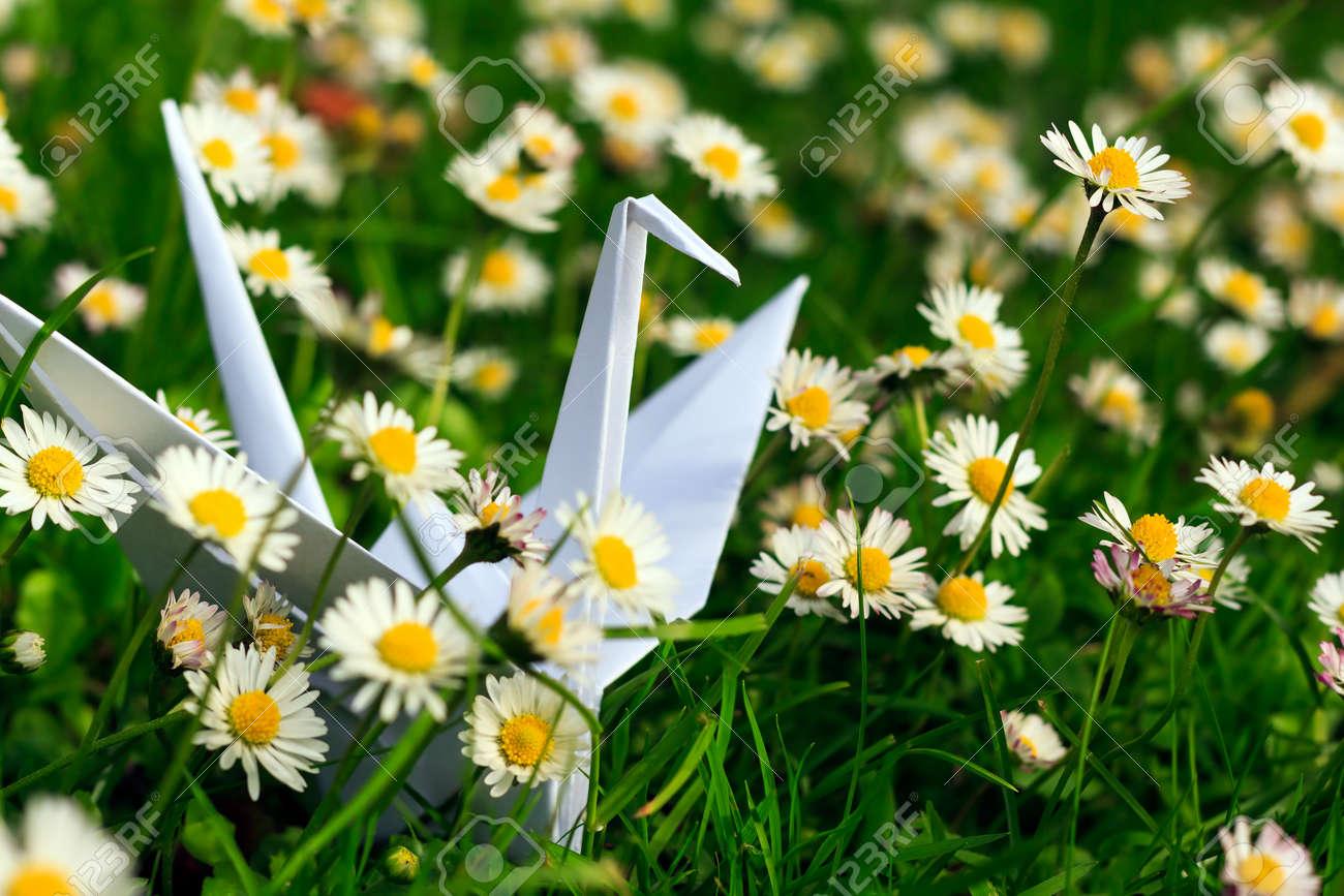 White paper bird and daisies Stock Photo - 30653183