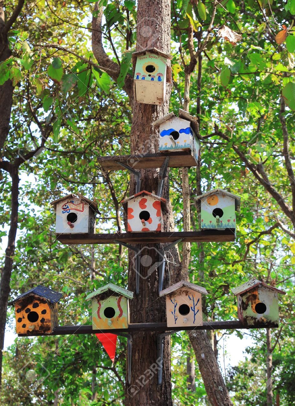 The Wooden of birdhouse family on tree Stock Photo - 10897272