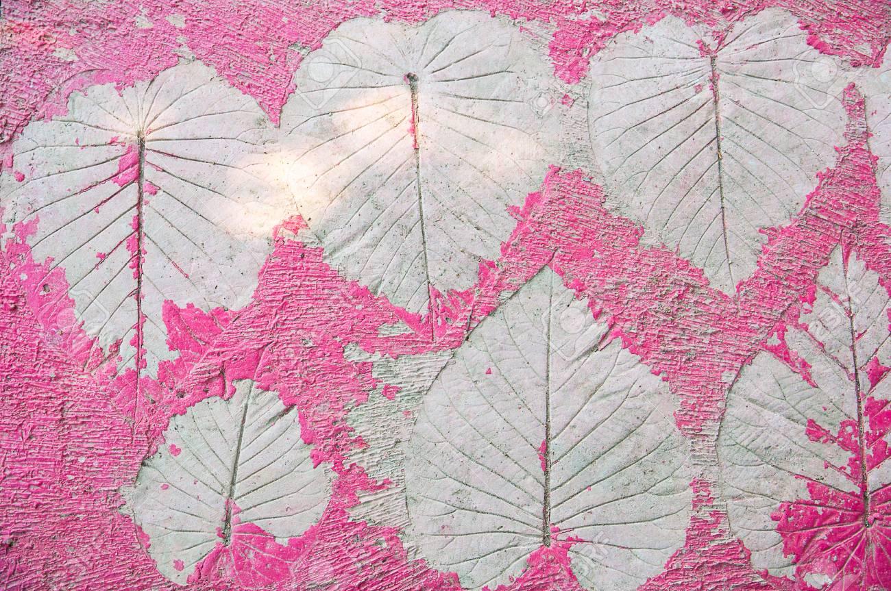 Forme De Feuilles Impression Sur Fond Beton Peinture Couleur Pourpre Avec Lumiere Et Ombre Du Soleil Banque D Images Et Photos Libres De Droits Image 51865988