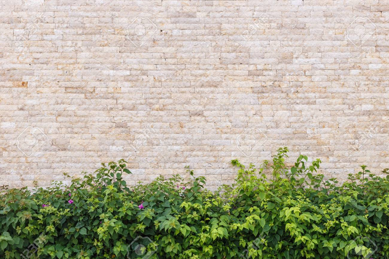 travertine stone wall and decorative garden stock photo, picture