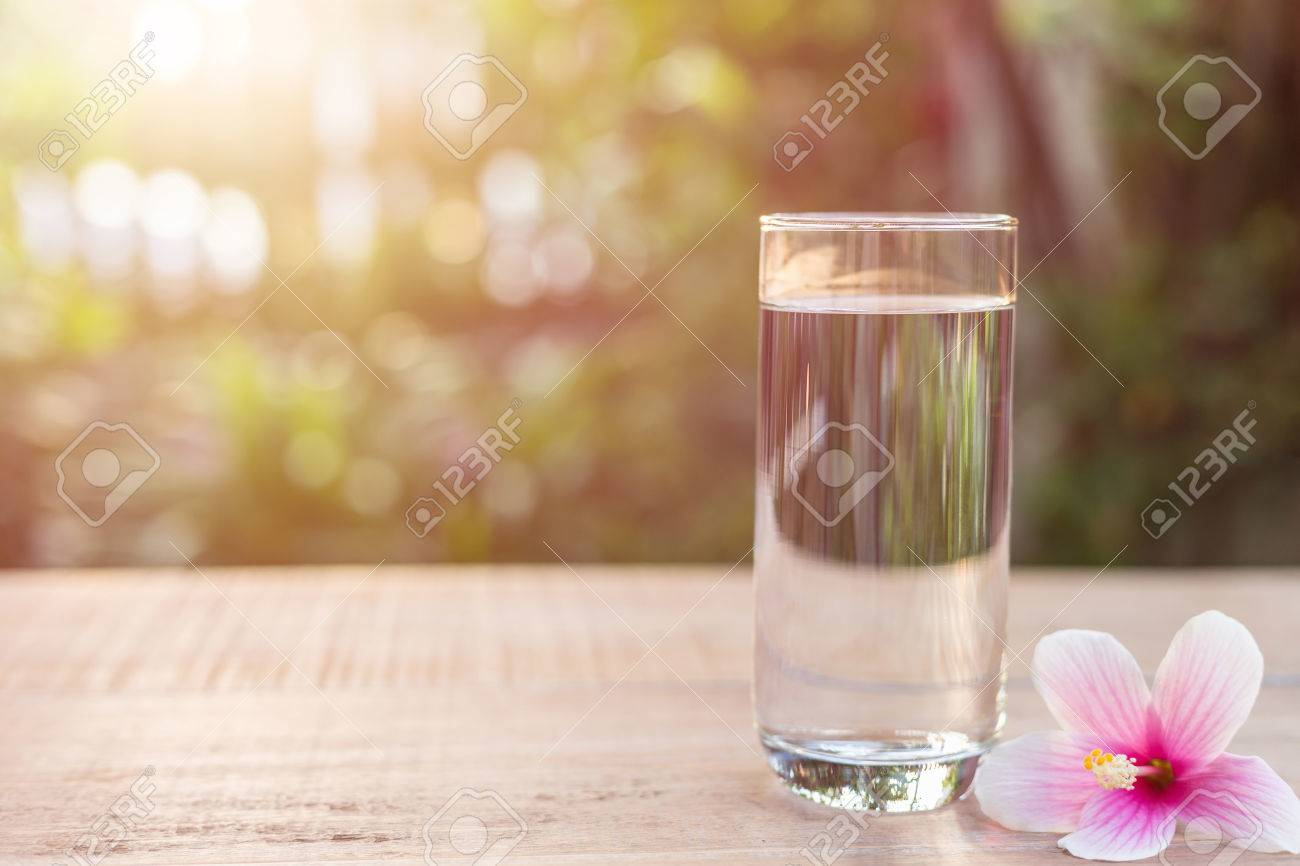Close Up Glass Of Clear Water And Pink Chinese Rose Flower On ...
