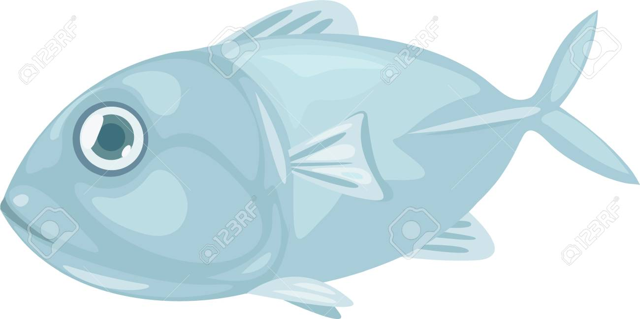 fish Stock Vector - 12125544