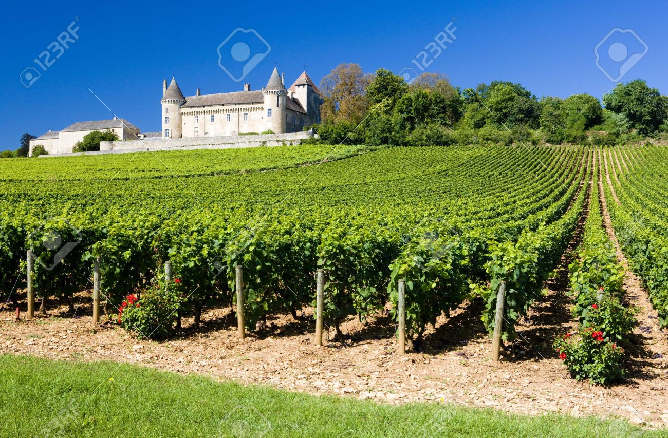 Chateau de Rully with vineyards, Burgundy, France - 7166144