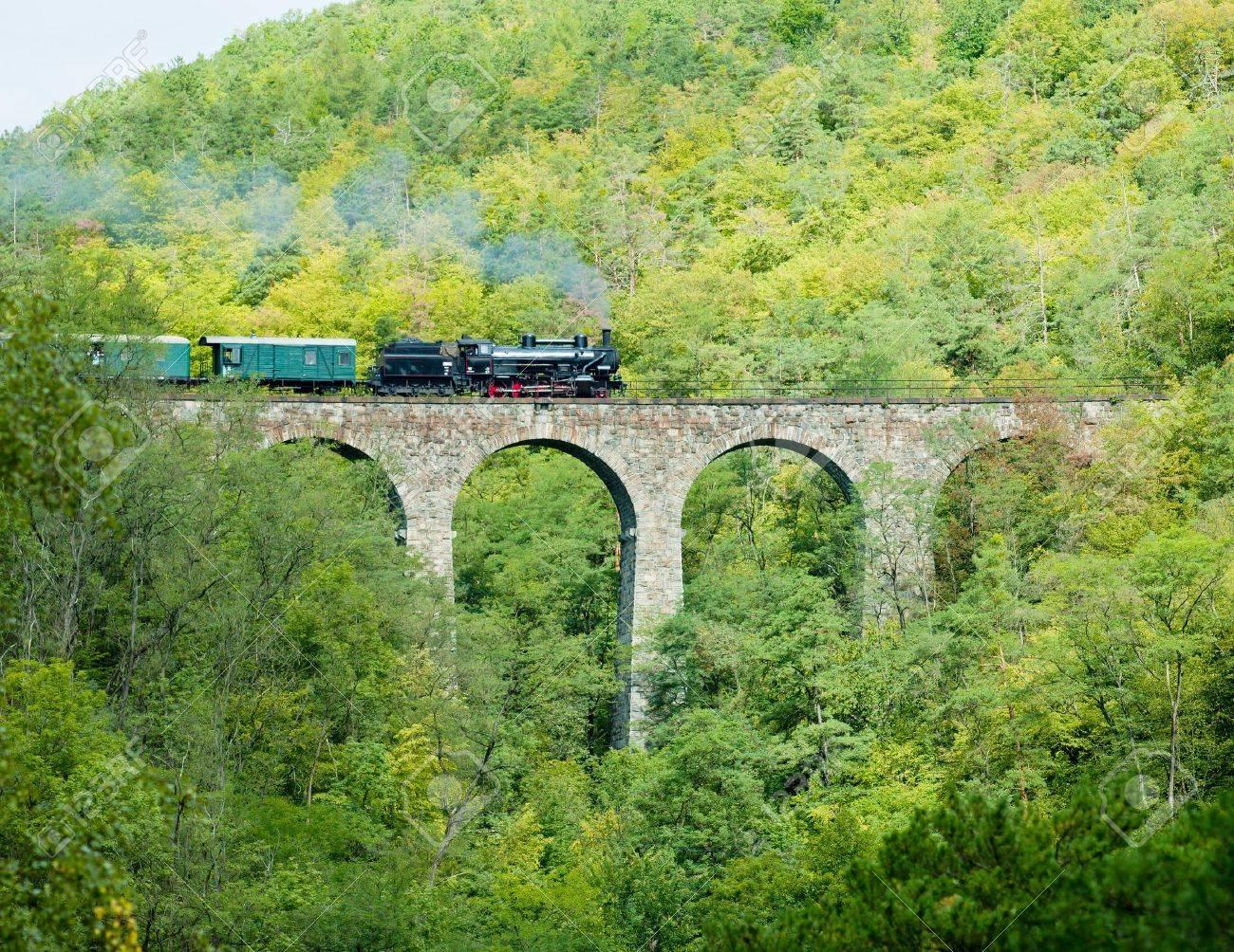 Zampach viaduct, Czech Republic Stock Photo - 8133876