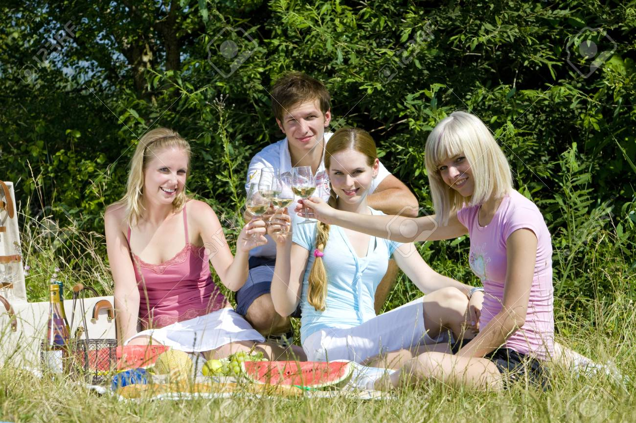 friends at a picnic Stock Photo - 8952809