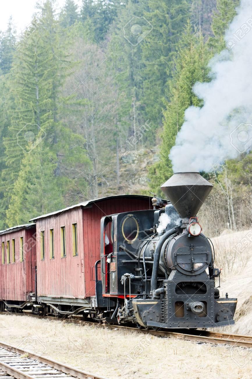 steam train, Ciernohronska Railway, Slovakia Stock Photo - 9089391