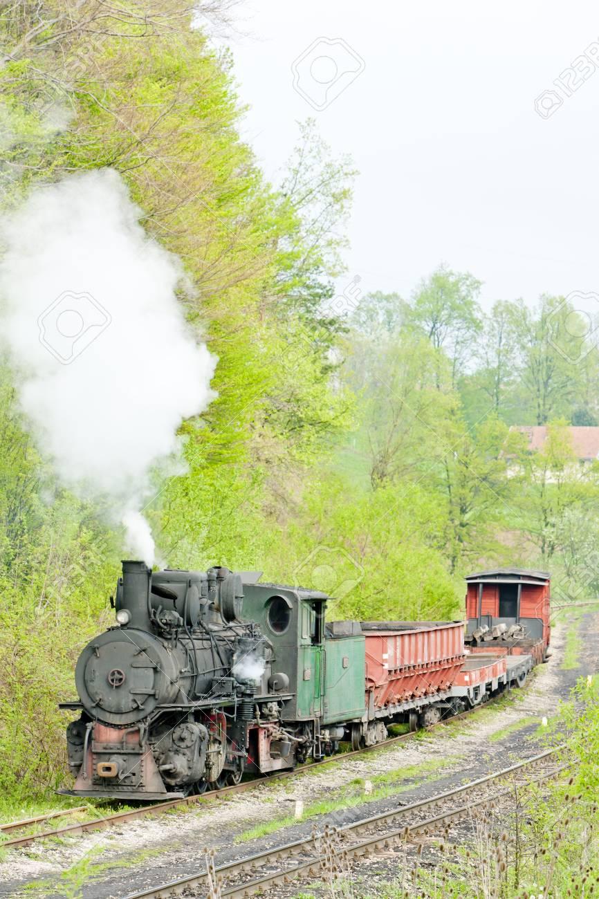 narrow gauge railway, Banovici, Bosnia and Hercegovina Stock Photo - 9089396