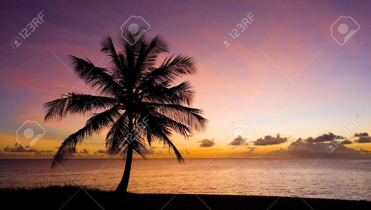 sunset over Caribbean Sea, Barbados Stock Photo - 9470846