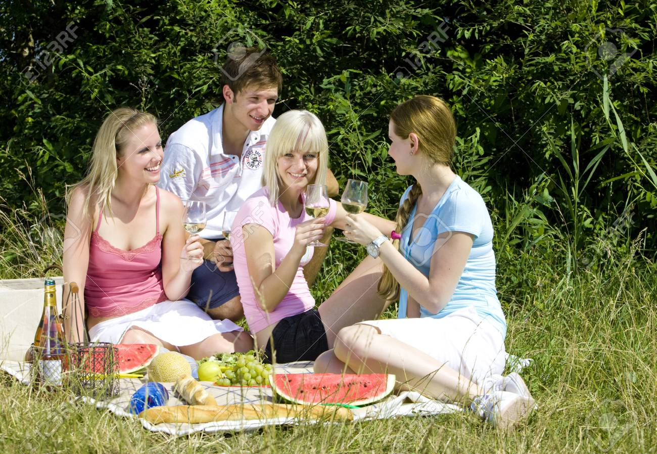 friends at a picnic Stock Photo - 9619913