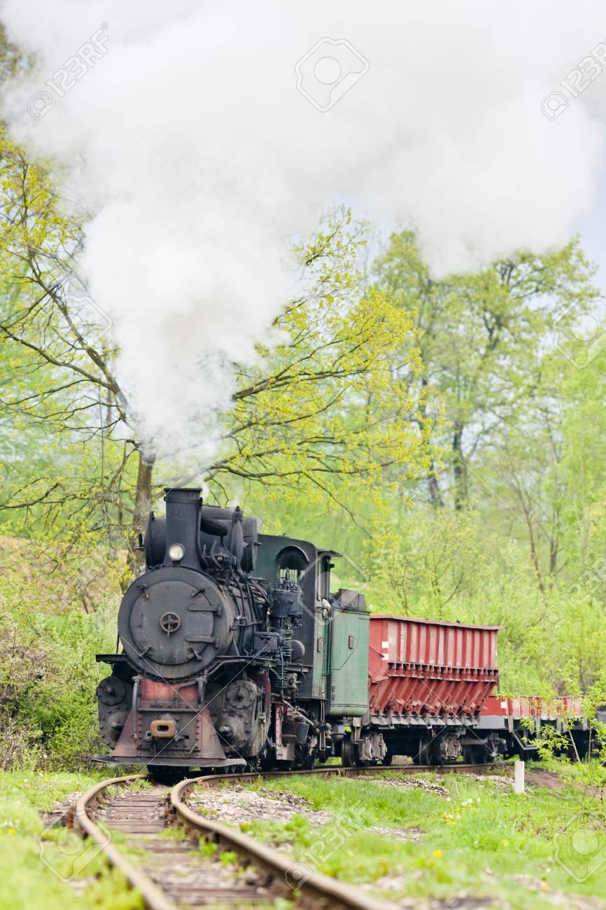 狭いゲージの鉄道、Banovici、ボ...