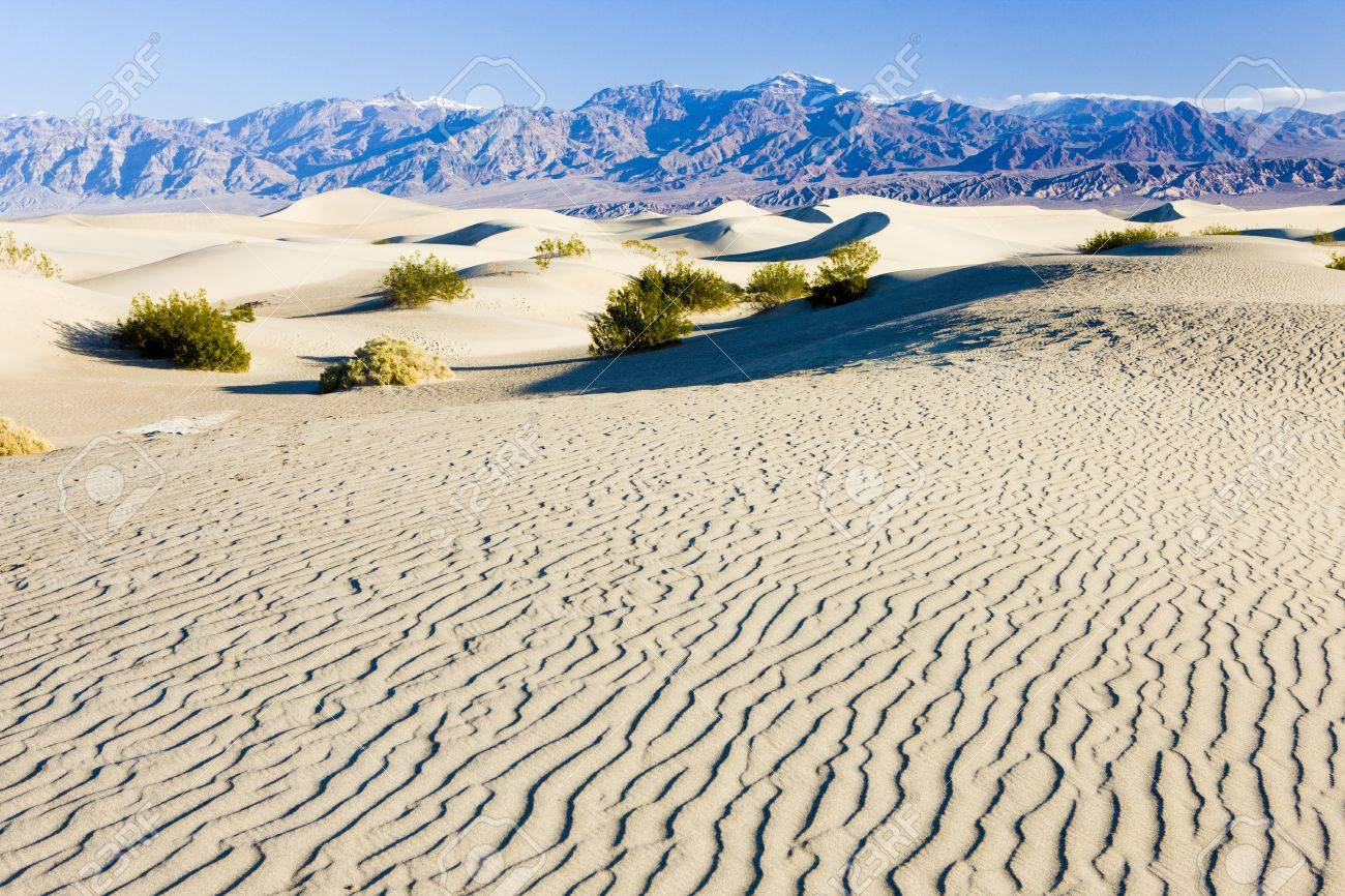 Stovepipe Wells sand dunes, Death Valley National Park, California, USA Stock Photo - 15372634