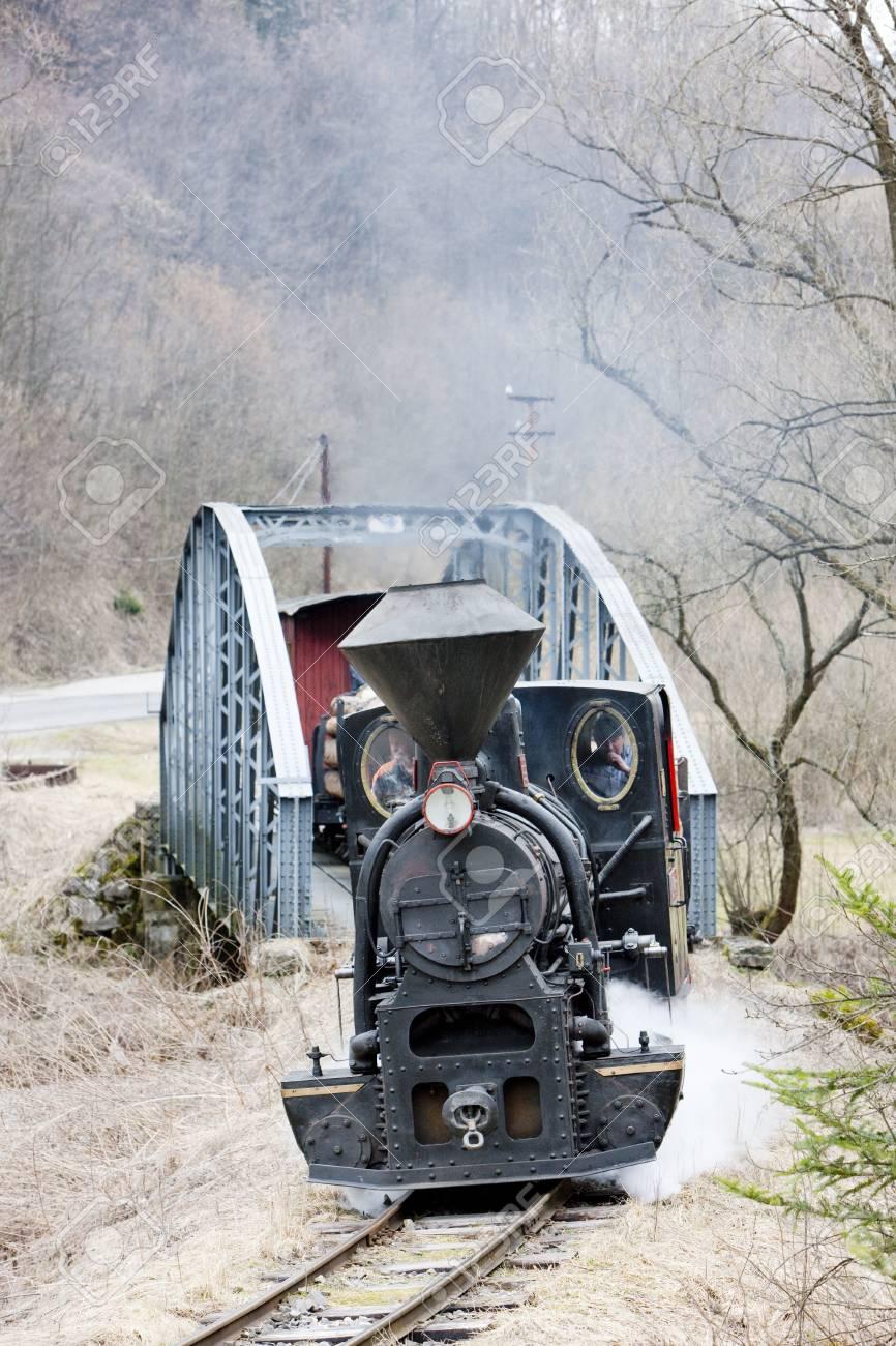 steam train, Ciernohronska Railway, Slovakia Stock Photo - 15370997