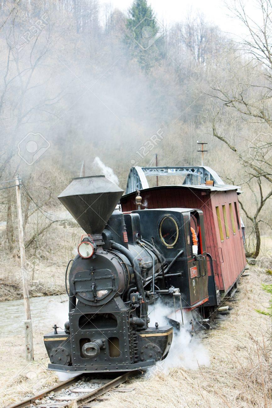 steam train, Ciernohronska Railway, Slovakia Stock Photo - 15370984