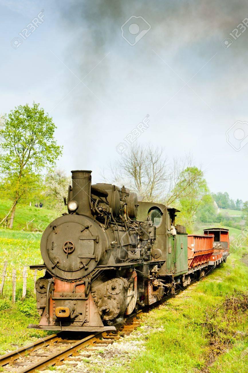 narrow gauge railway, Banovici, Bosnia and Hercegovina Stock Photo - 16770066