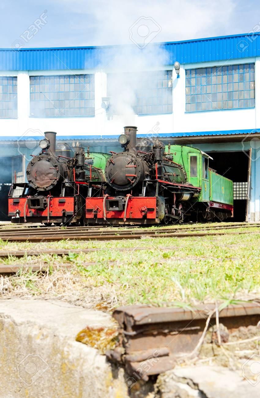 steam locomotives in depot, Kostolac, Serbia Stock Photo - 18132973