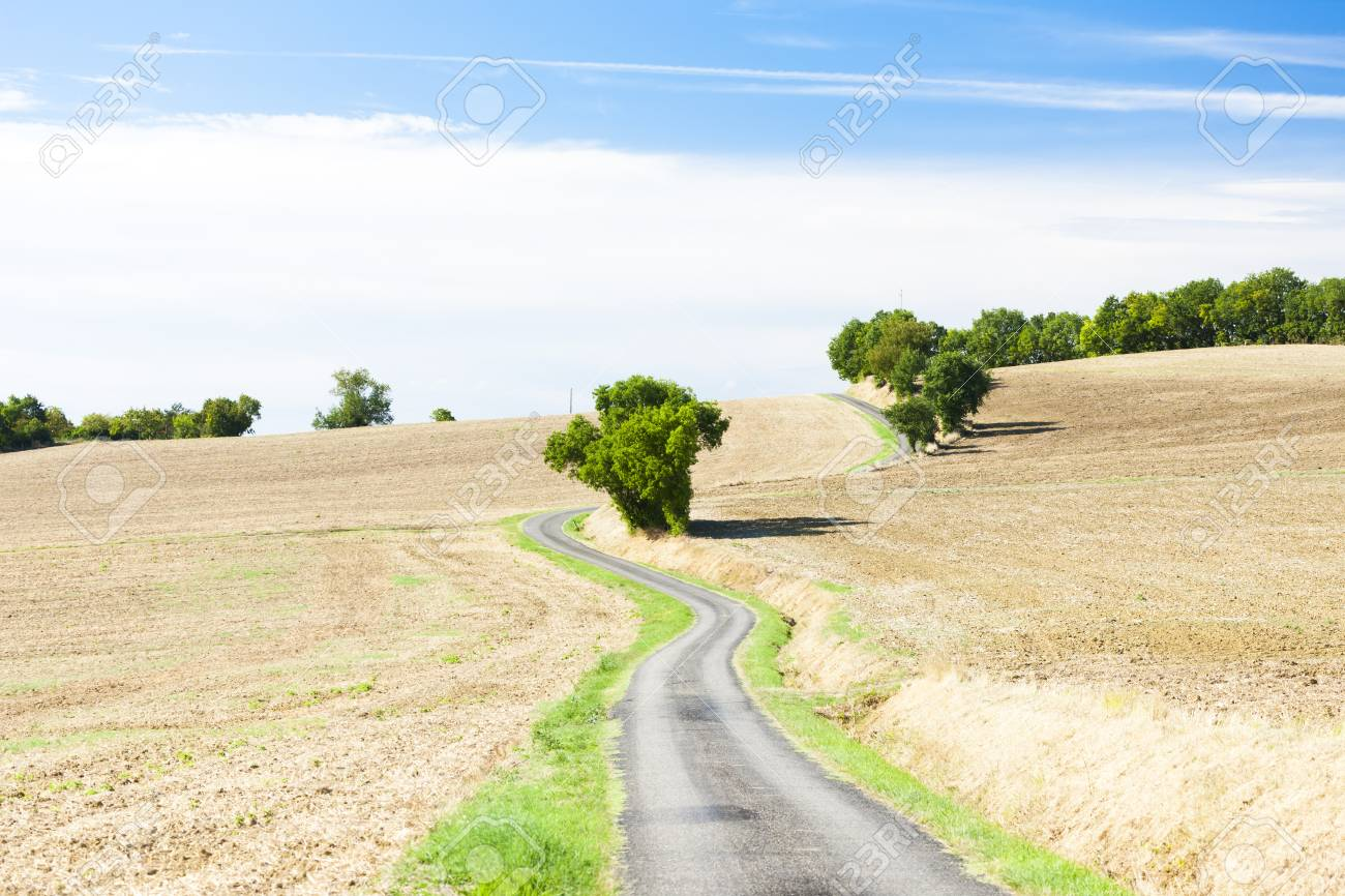 field with a road, Gers Department, France Stock Photo - 18133131