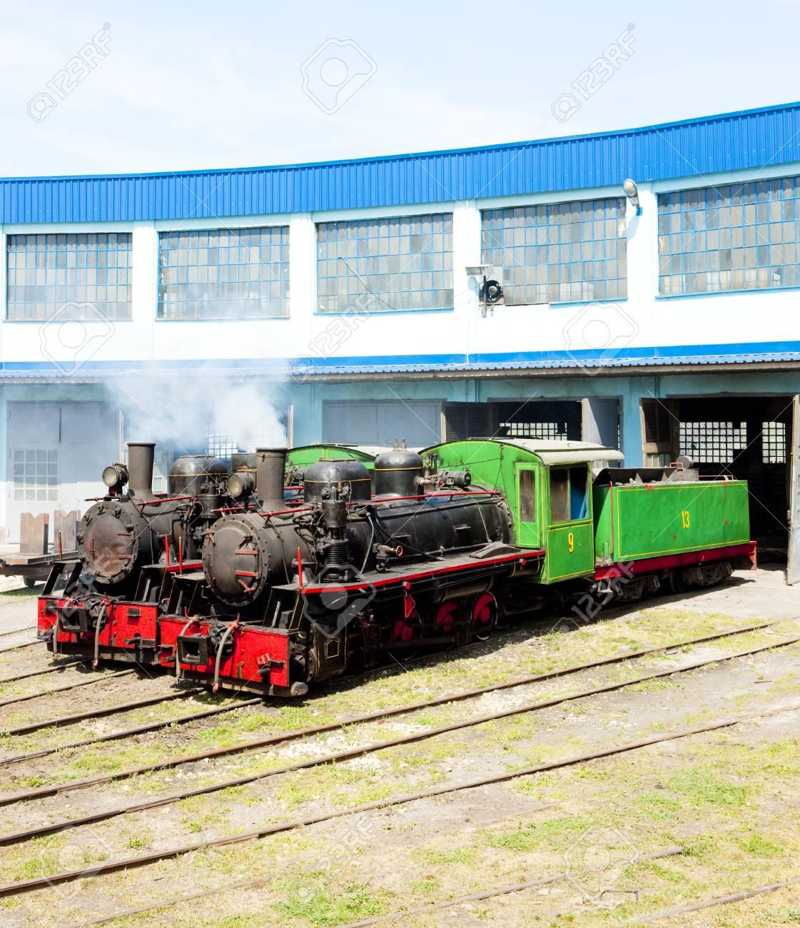 steam locomotives in depot, Kostolac, Serbia Stock Photo - 20431212