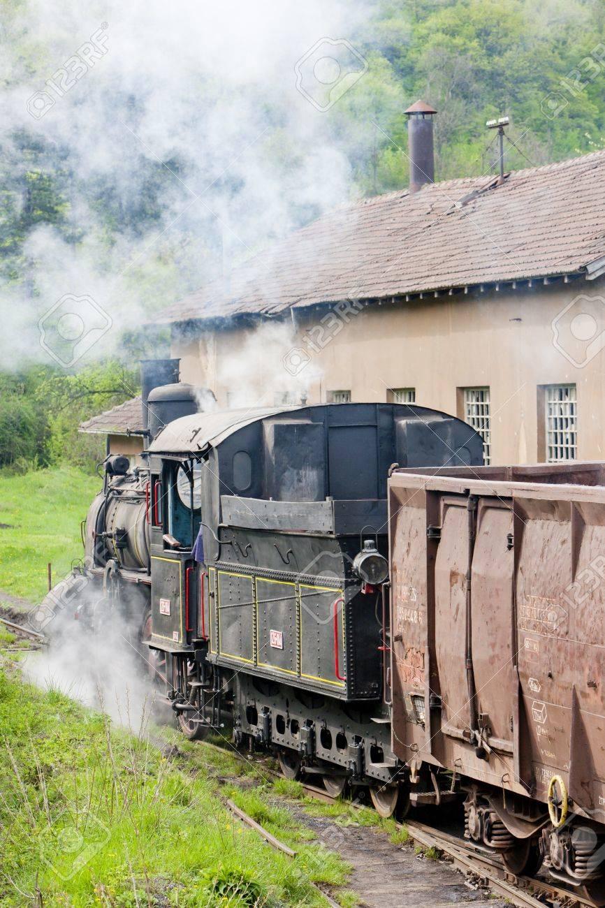 steam freight train (126.014), Resavica, Serbia Stock Photo - 20431070