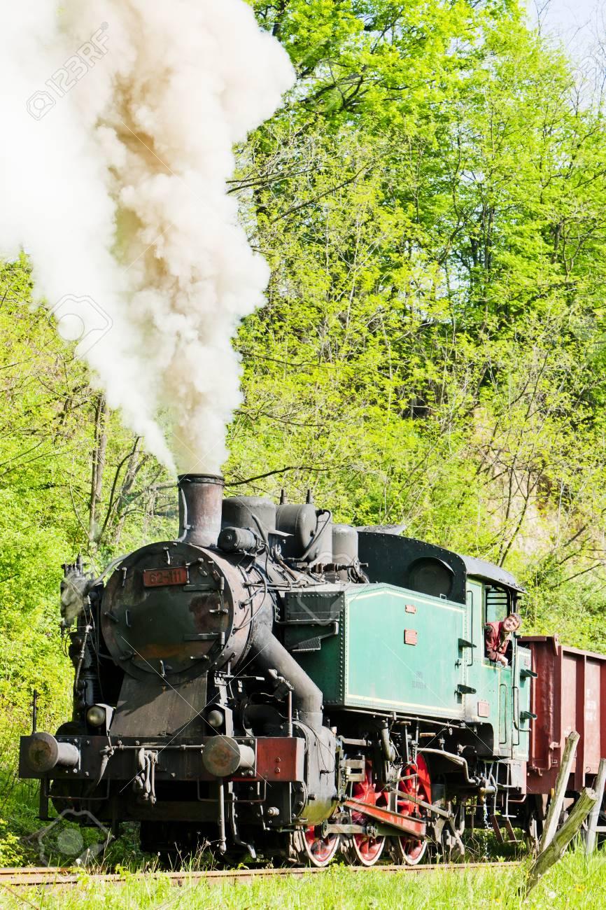 steam locomotive, Durdevik, Bosnia and Hercegovina Stock Photo - 28239624