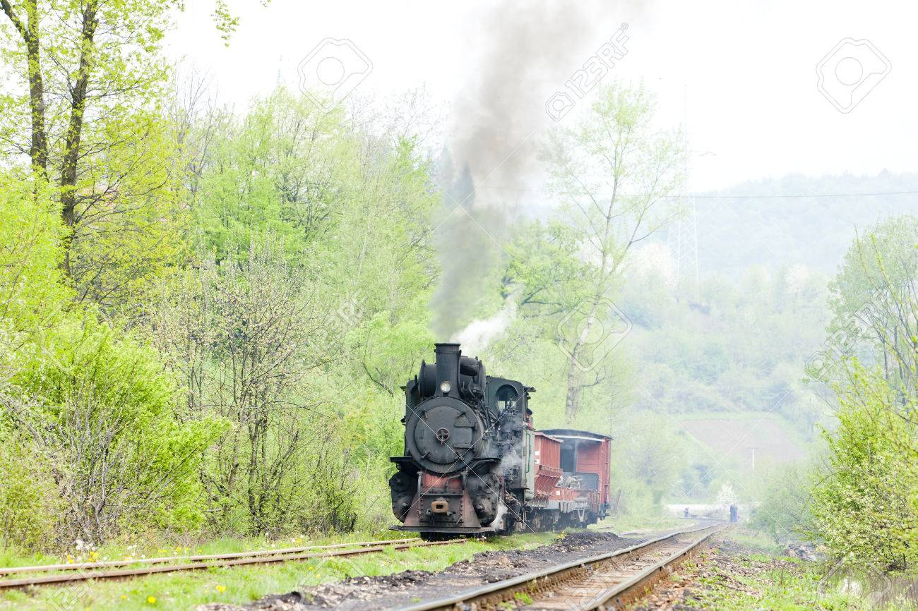 narrow gauge railway, Banovici, Bosnia and Hercegovina Stock Photo - 29286004