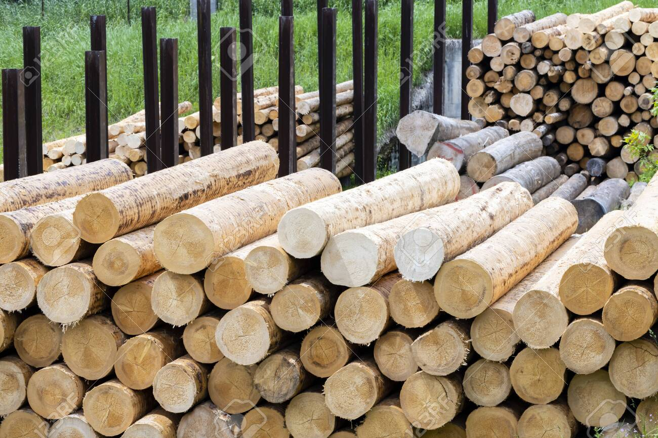 woodworking industry in Alps, Italy - 130438565