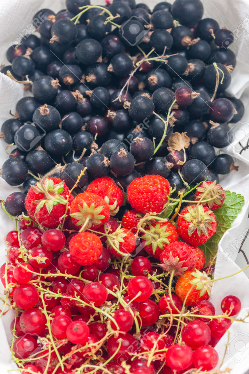 fresh summer fruit in the basket - 169976266