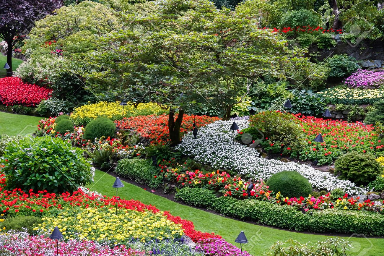 Butchart gardens brentwood bay near victoria vancouver island butchart gardens brentwood bay near victoria vancouver island british colombia canada stock photo 13468994 thecheapjerseys Image collections