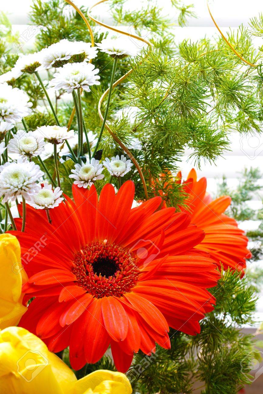 bouquet of tulips, gerberas, greenery, wild flowers, on a striped background Stock Photo - 12746200