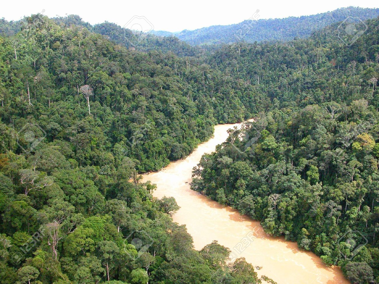 Tropical Rainforests And The Rajang River In Sarawak East Malaysia Stock Photo Picture And Royalty Free Image Image 885731