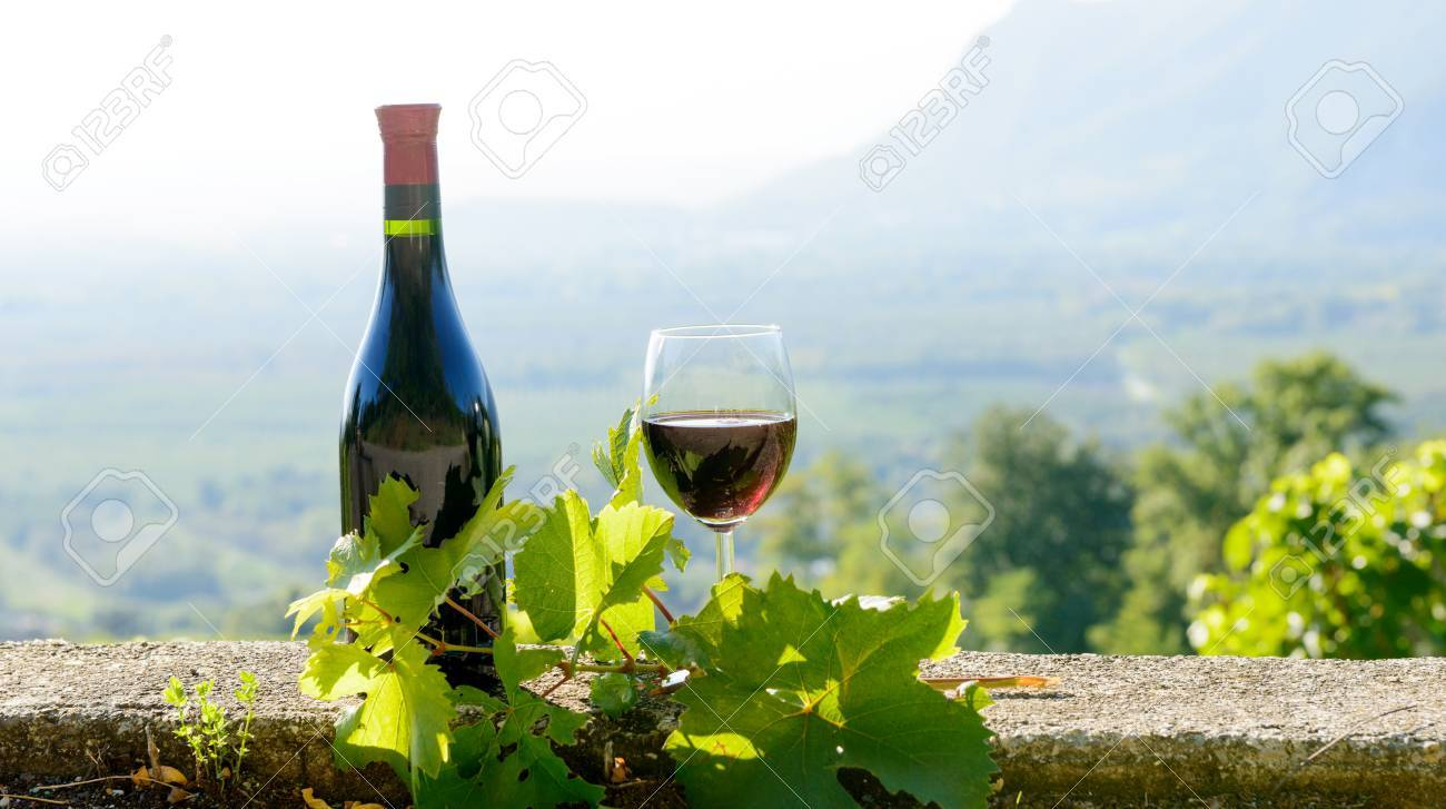 a bottle and a glass of red wine, on vineyard background - 53887780