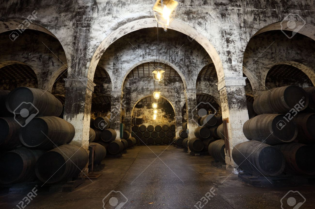 Ancient wine cellar with wooden wine barrels Stock Photo - 15059453