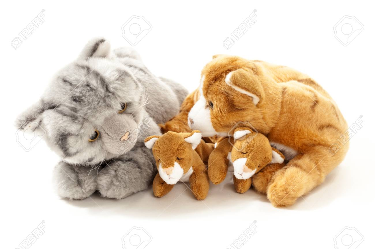 Stuffed Animals Cat Family Isolated Over White Background Stock