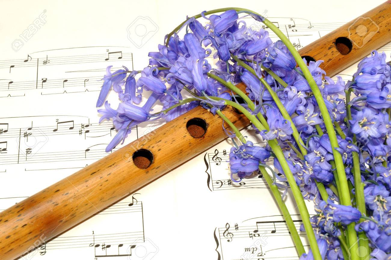 Paper Music Sheet With A Wooden Recorder And Spring Bluebell Stock
