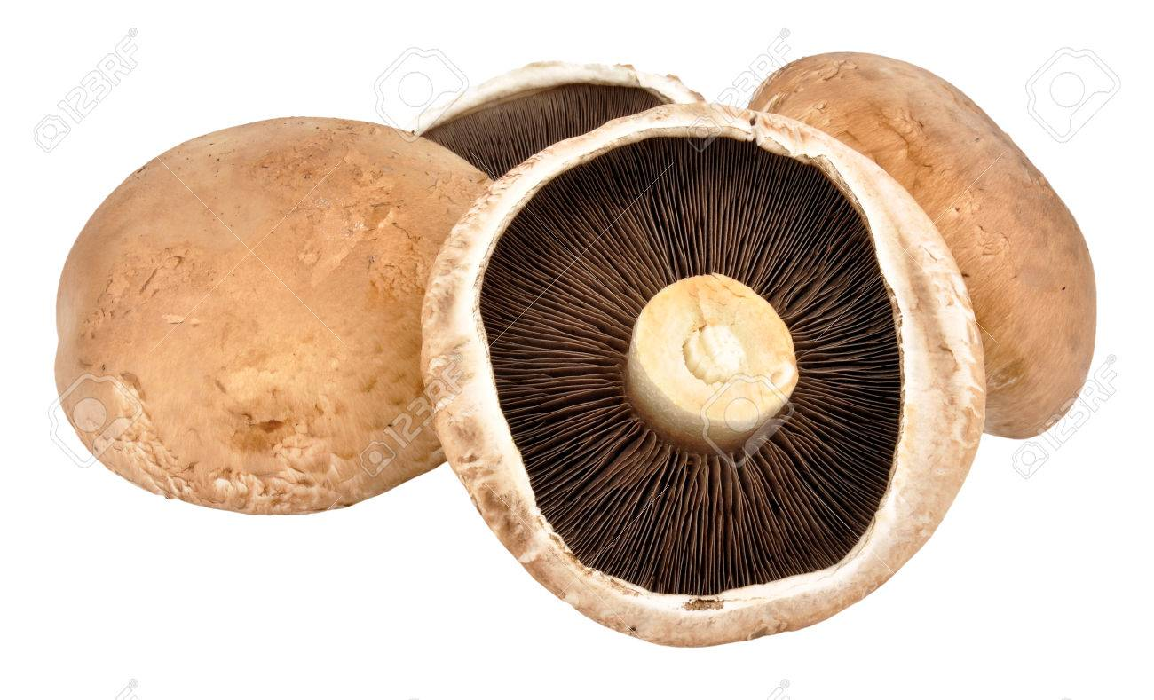Large Raw Portobello Mushrooms Isolated On A White Background Stock Photo Picture And Royalty Free Image Image 48676044