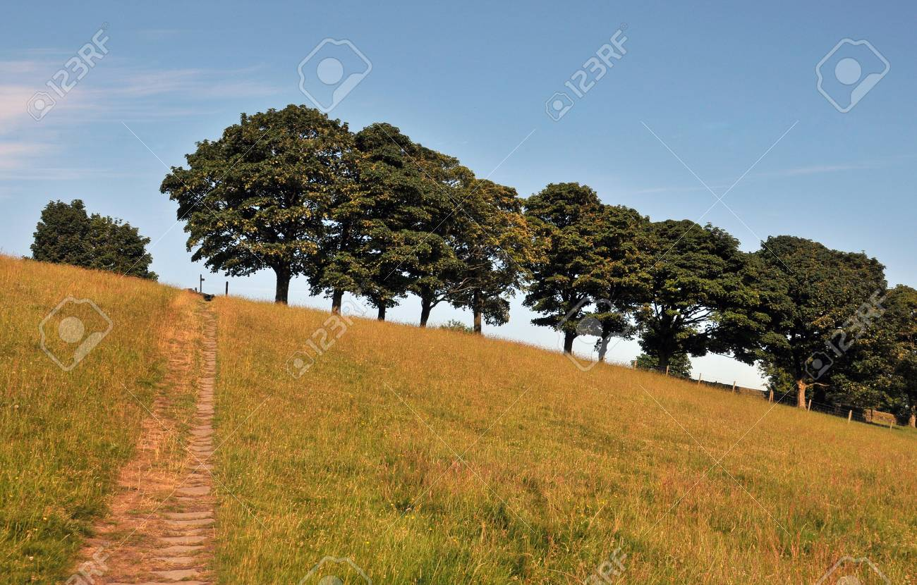 A Stone Pathway Leading To The Top Of A Hill In A Summer Meadow With