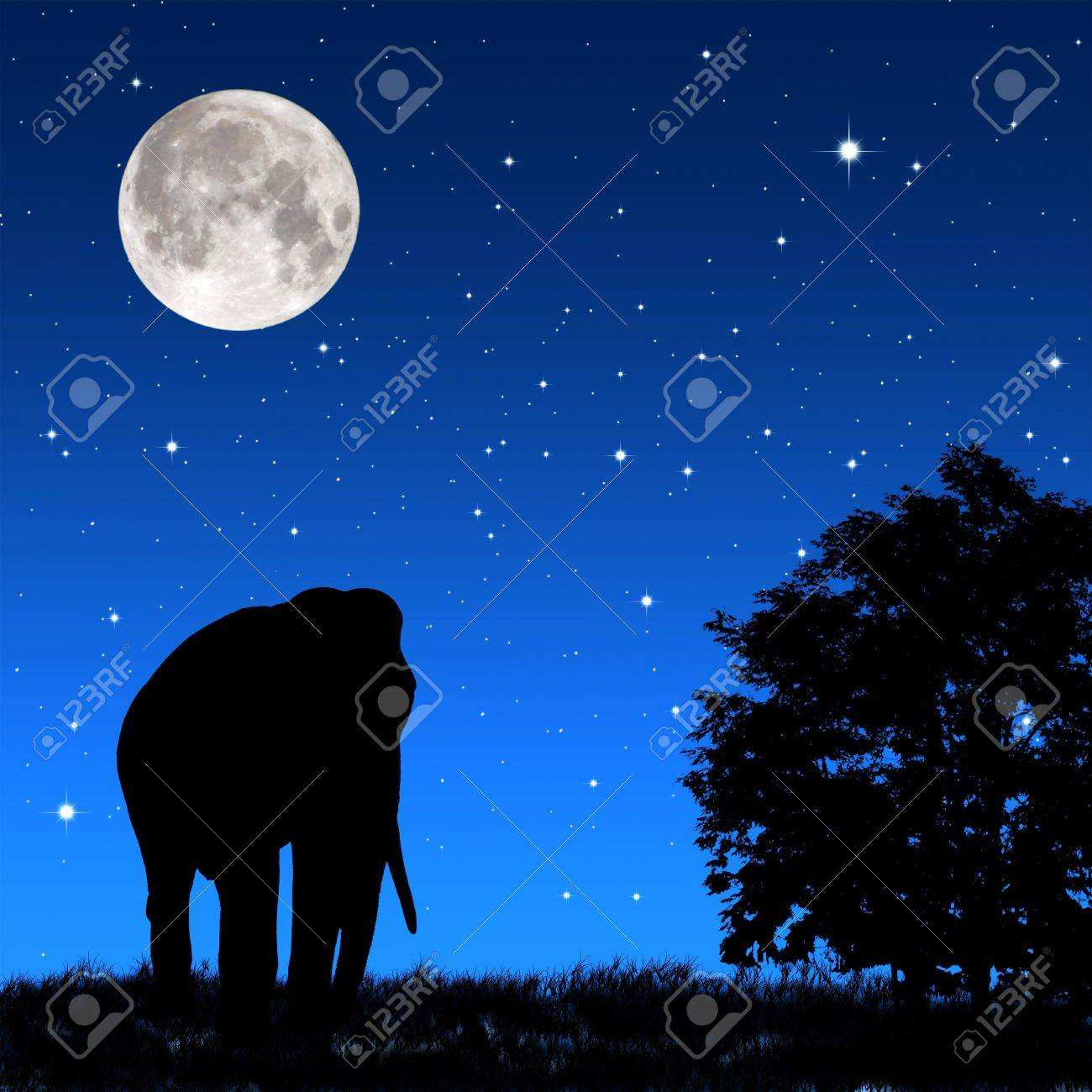 Shadow elephant tricky at night Stock Photo - 9205933