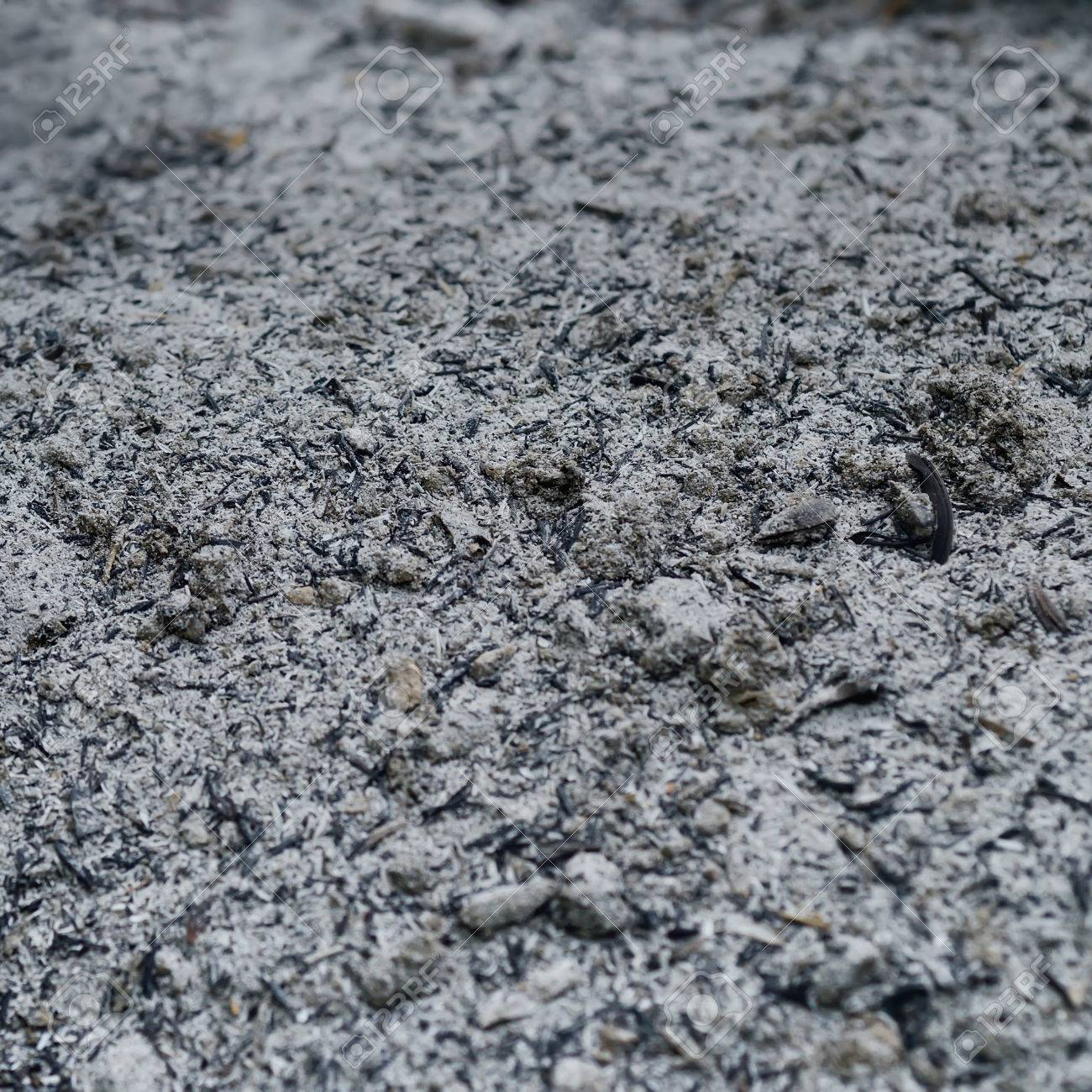 Fly Ash Concrete >> Fly Ash Raw Material For Mix With Concrete As Background Stock Photo