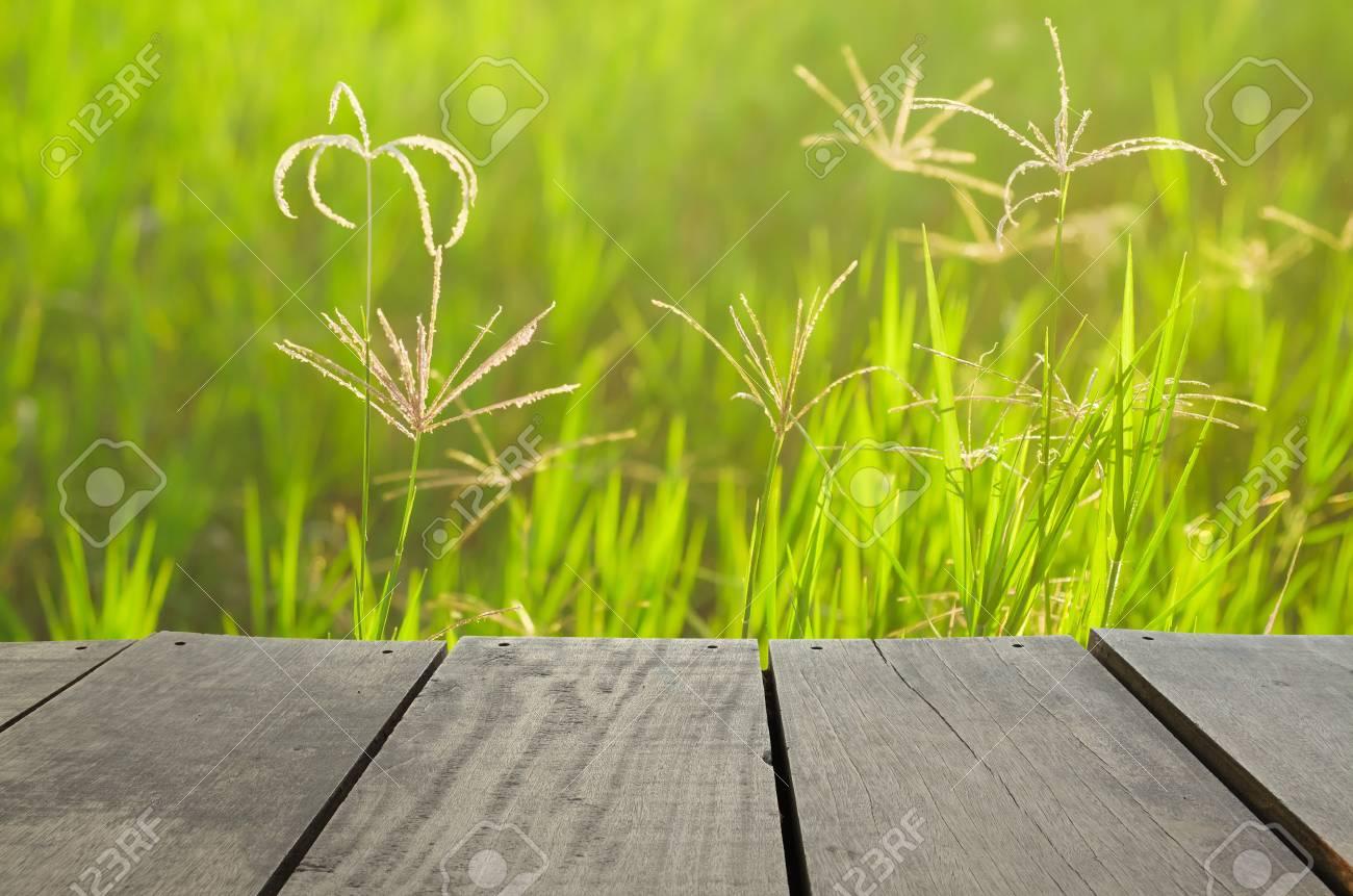 Uso De Terraza De Madera Y Campo De Hierba Verde Como Fondo Natural Telón De Fondo