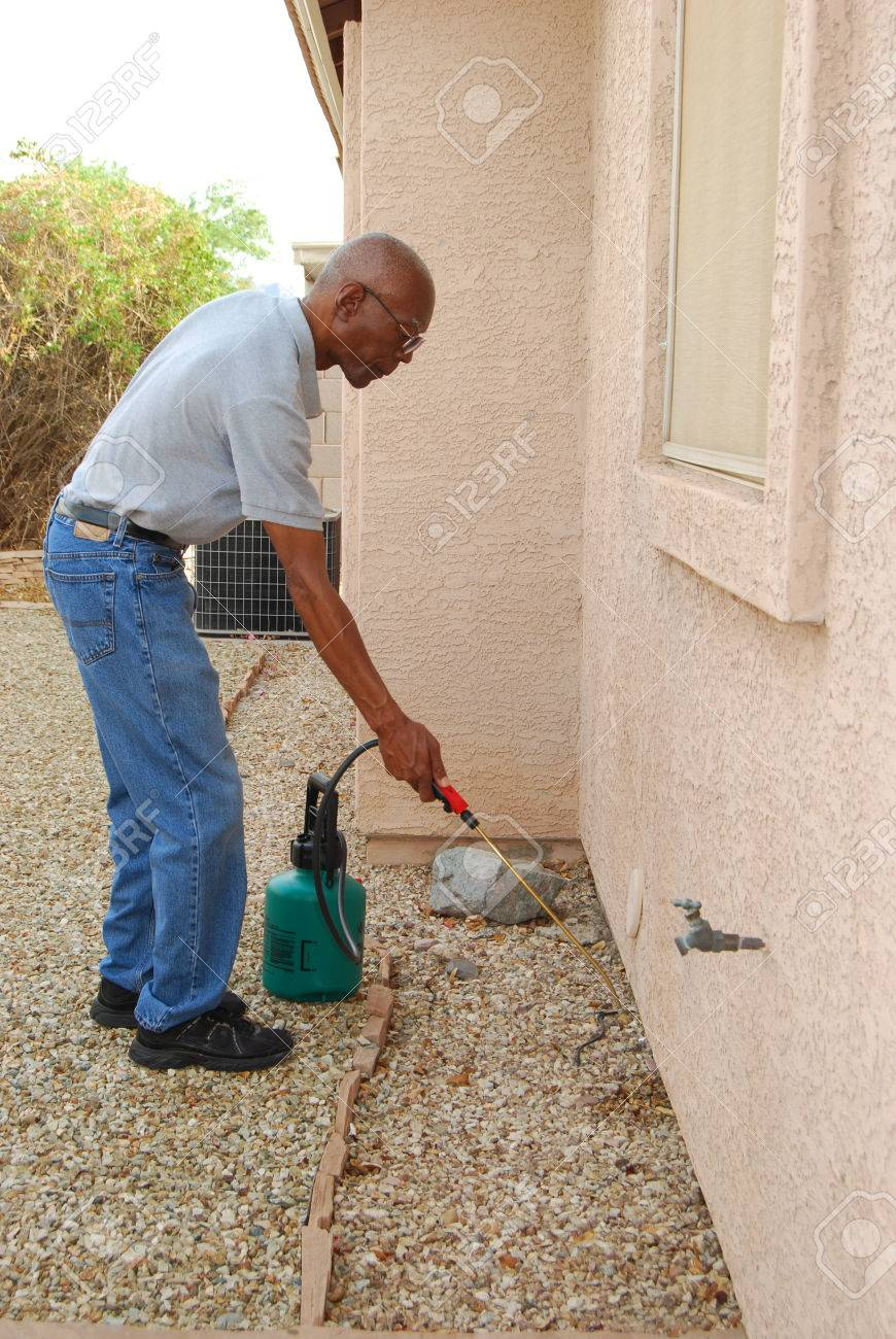 Male senior citizen using a do it yourself pest control kit stock male senior citizen using a do it yourself pest control kit to spray the solutioingenieria Gallery