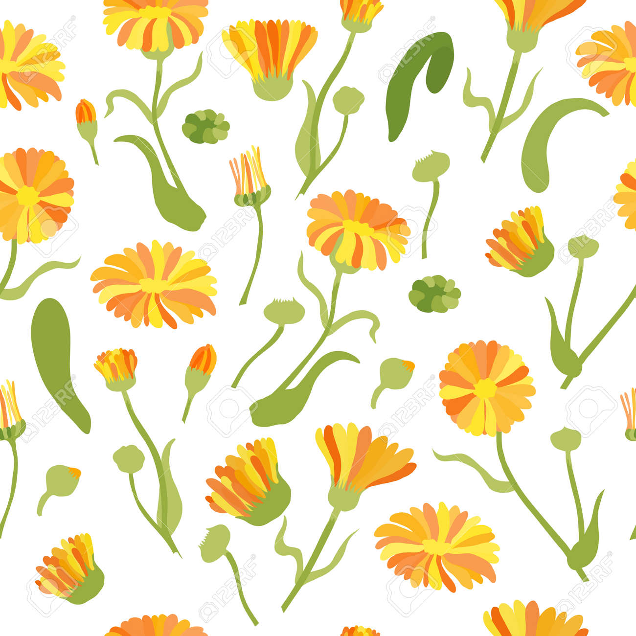 Seamless Pattern with Colored Calendula Parts. Twigs, Flower Heads and Leaves Placed Chaotically on White Backdrop. Ideal for Magazine, Recipe book, Poster, Card, Menu cover etc. - 166149135
